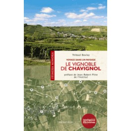 LE VIGNOBLE DE CHAVIGNOL