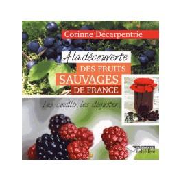 A LA DECOUVERTE DES FRUITS SAUVAGES DE FRANCE