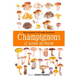 CHAMPIGNONS LE GUIDE DE POCHE