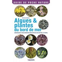 ALGUES & PLANTES DU BORD DE MER observer et reconnaître 50 espèces de notre littoral