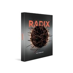 RADIX (anglais espagnol)