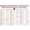 ORDONNANCE AMPÉLOTHÉRAPIQUE ET INSTRUCTIVE DES PRINCIPALES MALADIES DE LA SANTÉ HUMAINE