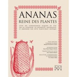 ANANAS REINE DES PLANTES