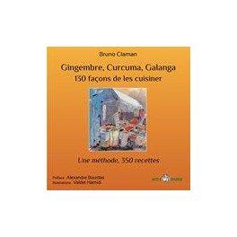 GINGEMBRE CURCUMA GALANGA 130 façons de les cuisiner